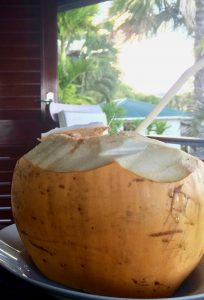 Kokoswasser - frisch als Mittel gegen Magen-/Darmbeschwerden bewährt