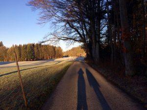 Vitamin D: nur wenn unser Schatten kleiner ist als wir selbst