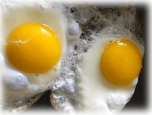 Cholesterin: das Ei ist unschuldig!